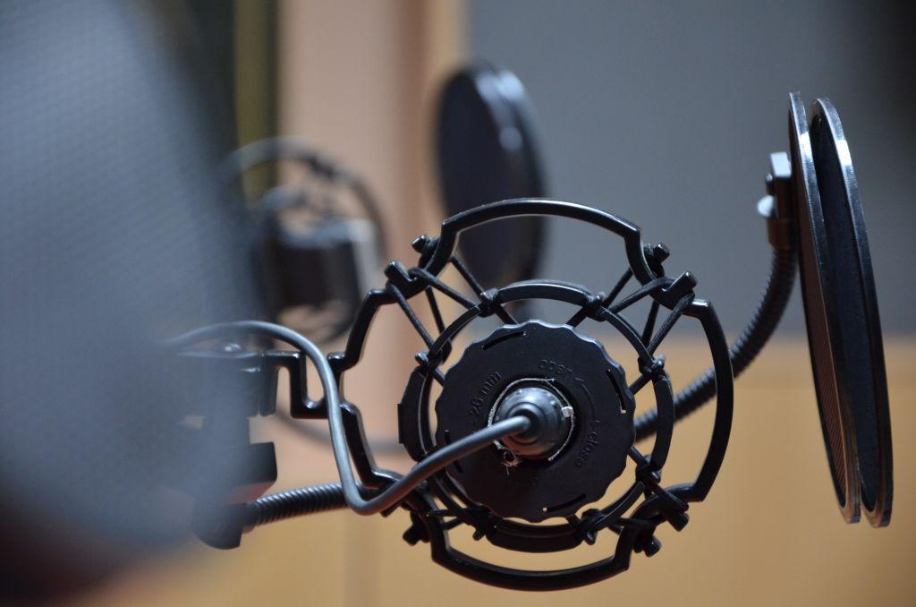 Studiový mikrofon (ilustr. foto)