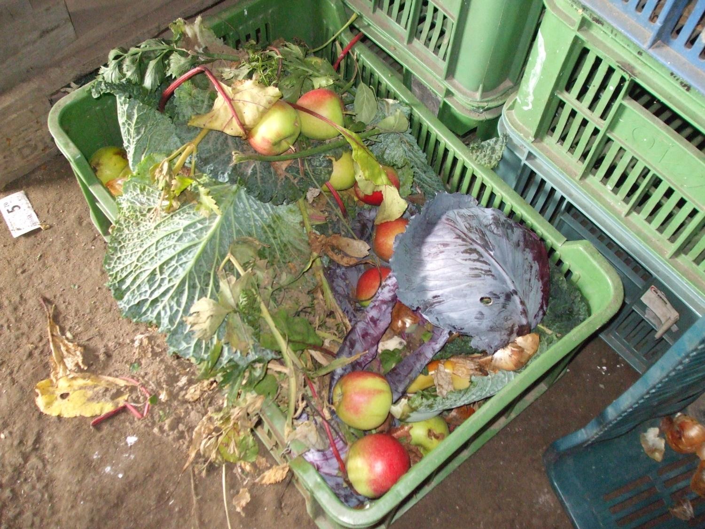 Nekvalitní zelenina a ovoce musí pryč