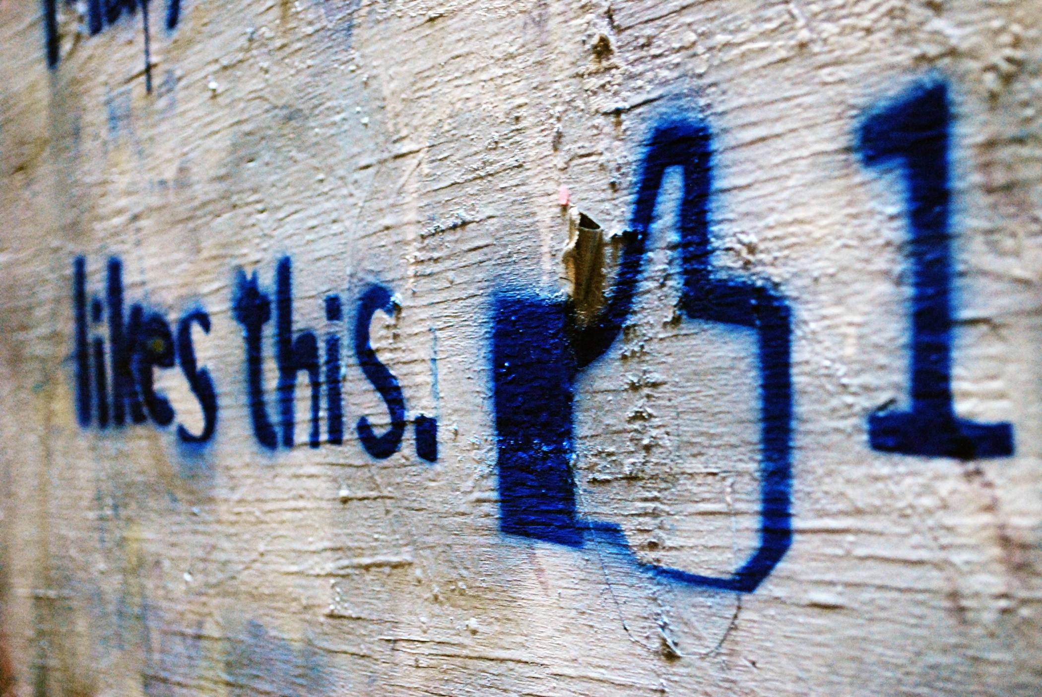 Facebook - sociální sítě - like - lajk