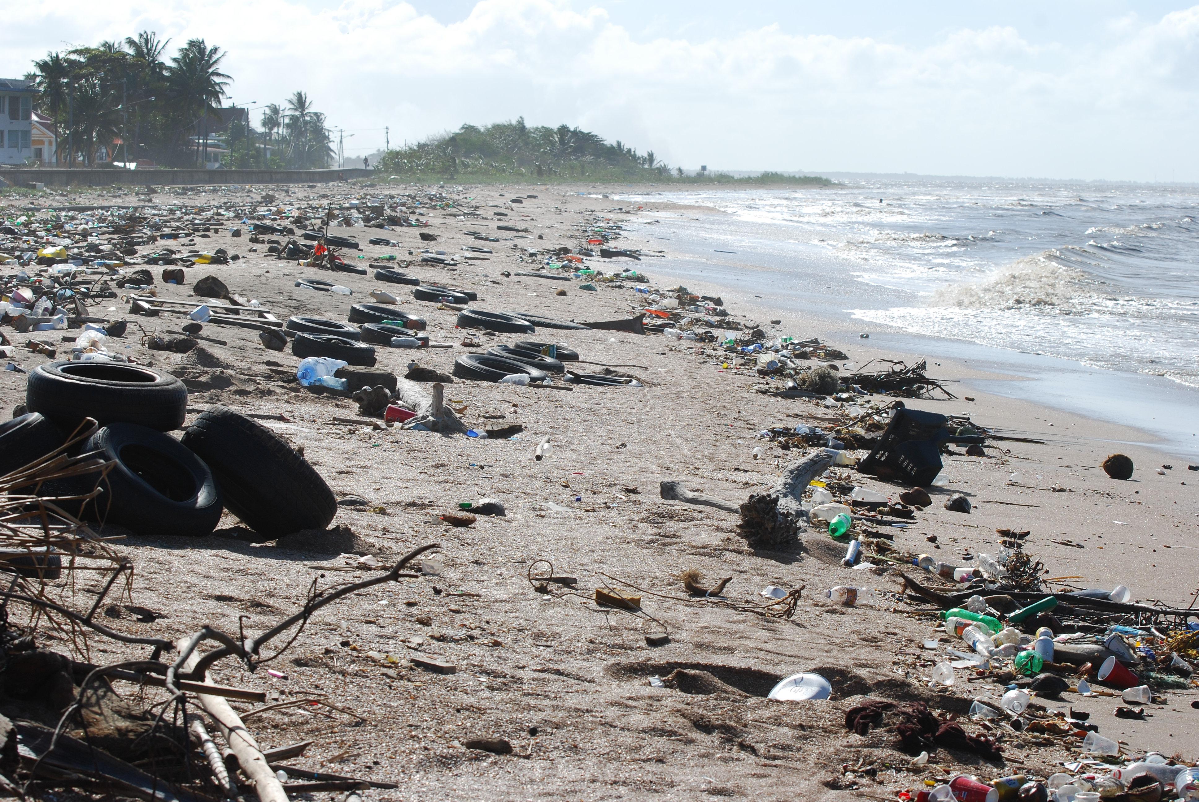 Znečištění oceánů - znečištěné moře