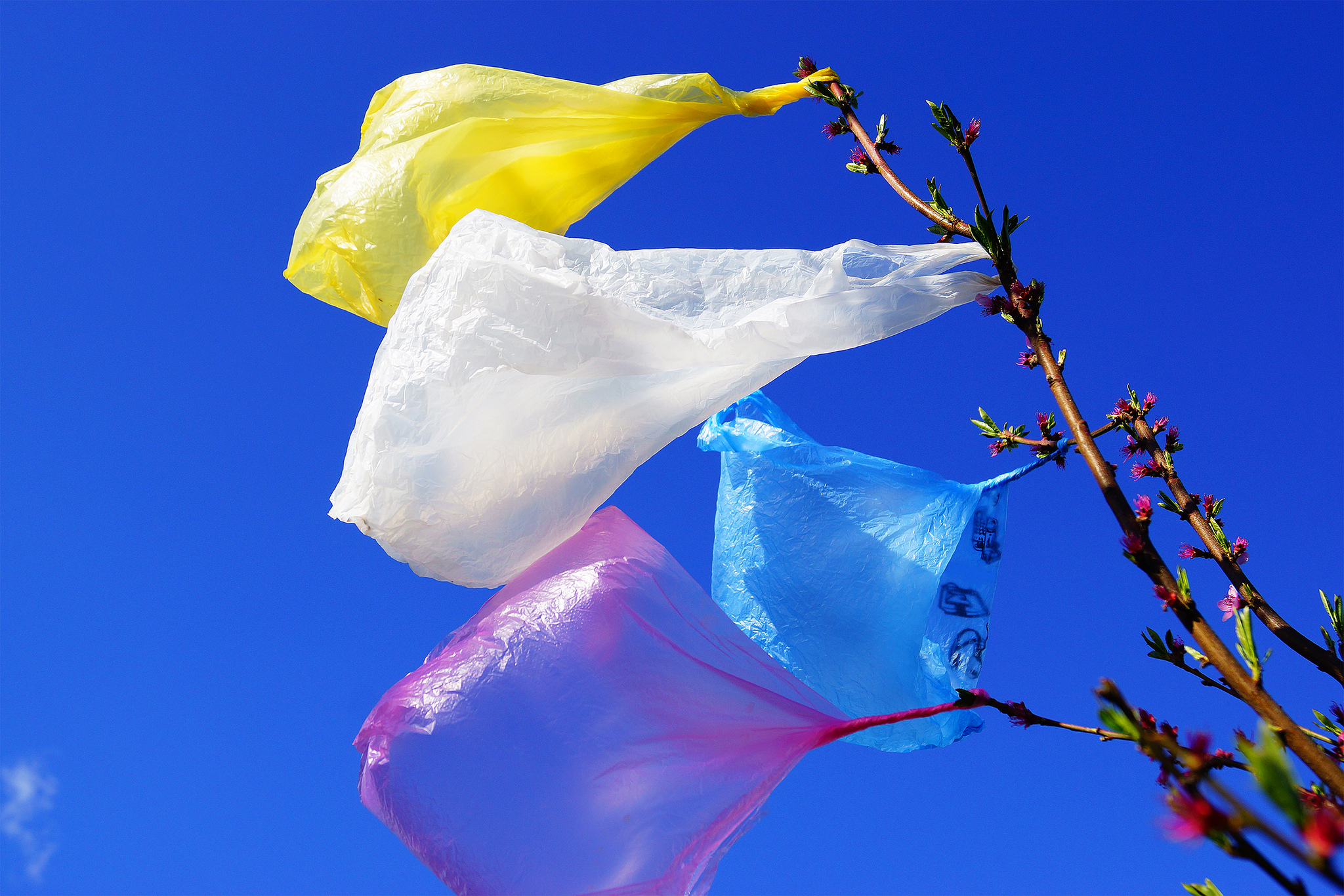 Igelitka – plastový sáček