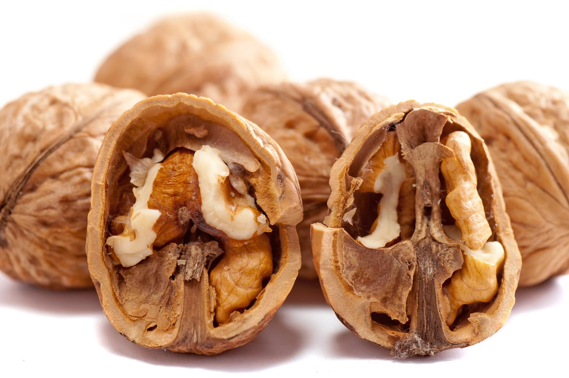 Vlašský ořech je poklad