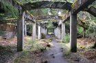 Na německé hranici u Přebuzi vnadmořské výšce přes 900 metrů stojí uprostřed rozsáhlých rašelinišť ruiny opuštěné nacistické továrny