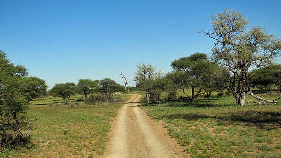 Cesta na farmu Limpopo