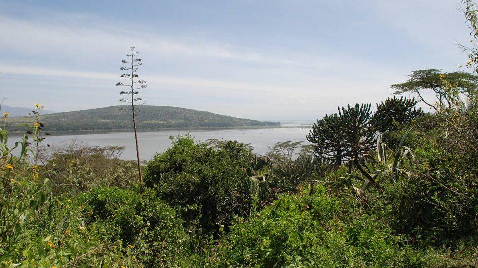 Jezero Naivasha v Keni