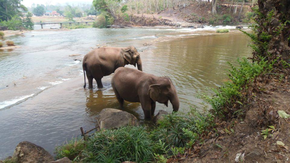 Sloni, vodopády Tadlo