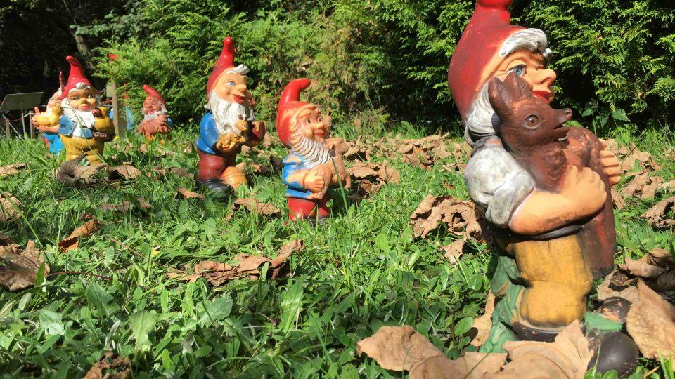 Zahradní trpaslík nesmí chybět v žádné německé zahradě