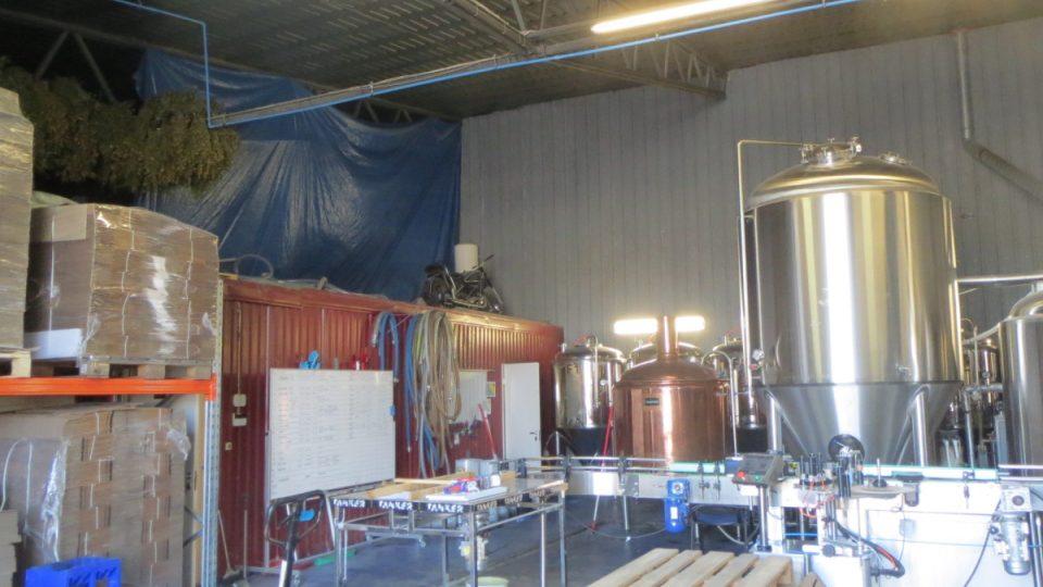 Estonský pivovar s březovým pivem sklízí úspěch