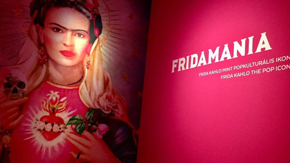 Výstava přibližující život a dílo malířky Fridy Kahlo bude na Budínském hradě otevřena do listopadu 2018.