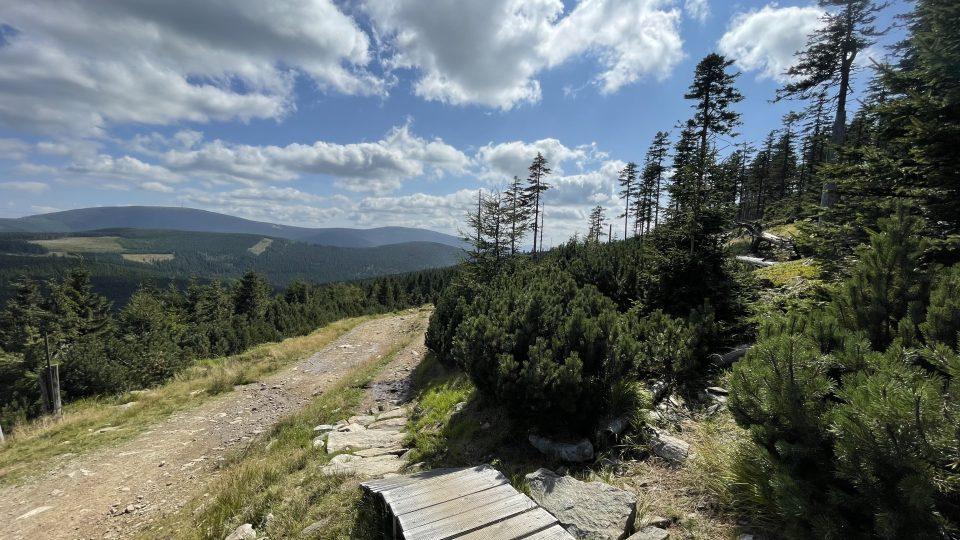 Z Černé hory se dá do Kladské kotliny sjet na kole, nebo sejít pěšky