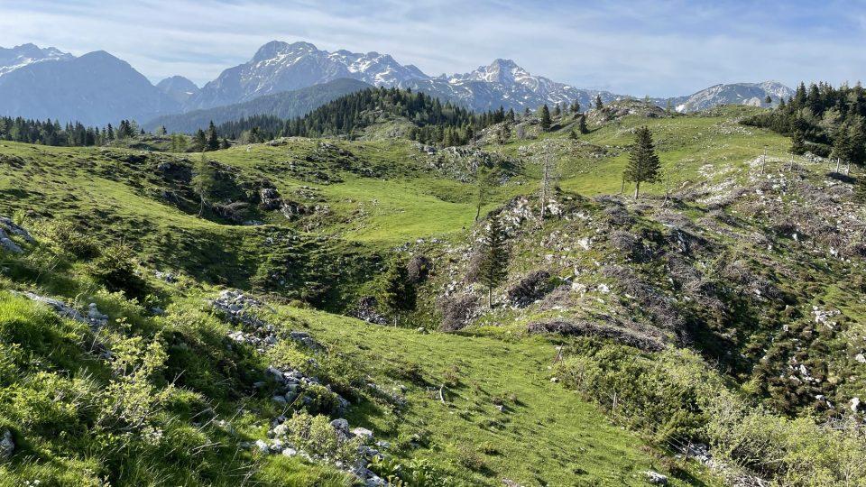Veliká Planina je nejvýše položenou pastvinou tady v Kamnicko-Savinjských Alpách a ve Slovinsku vůbec