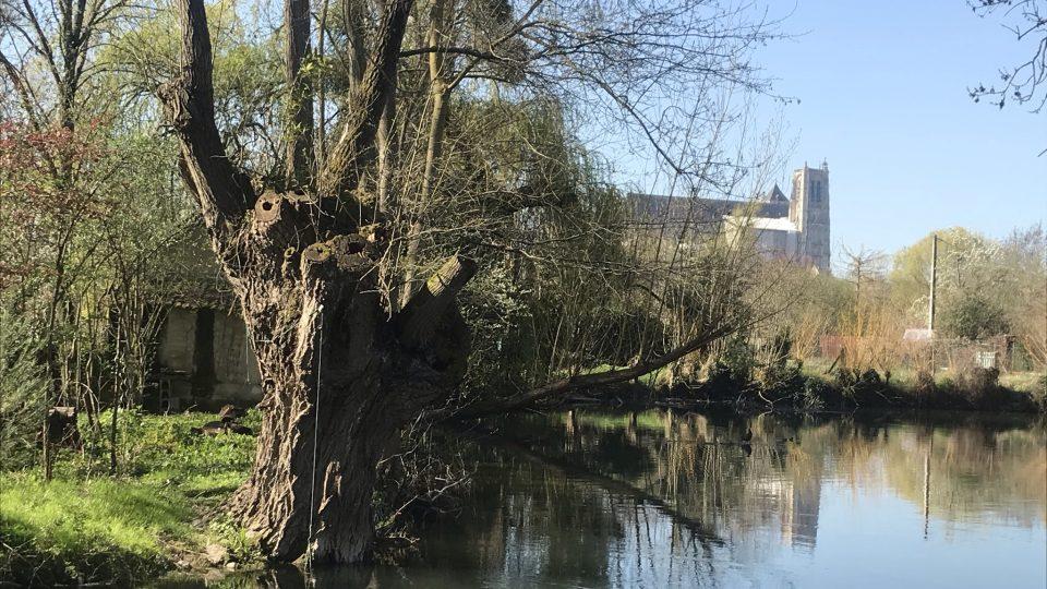 Samotné místo protkané vodními kanály je úchvatné – a ještě je odtud vidět katedrála v centru města