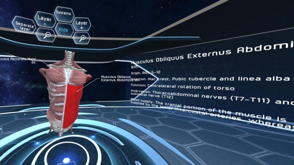 Ve virtuální učebnici je podrobně popsána každá kost, sval, nerv a céva