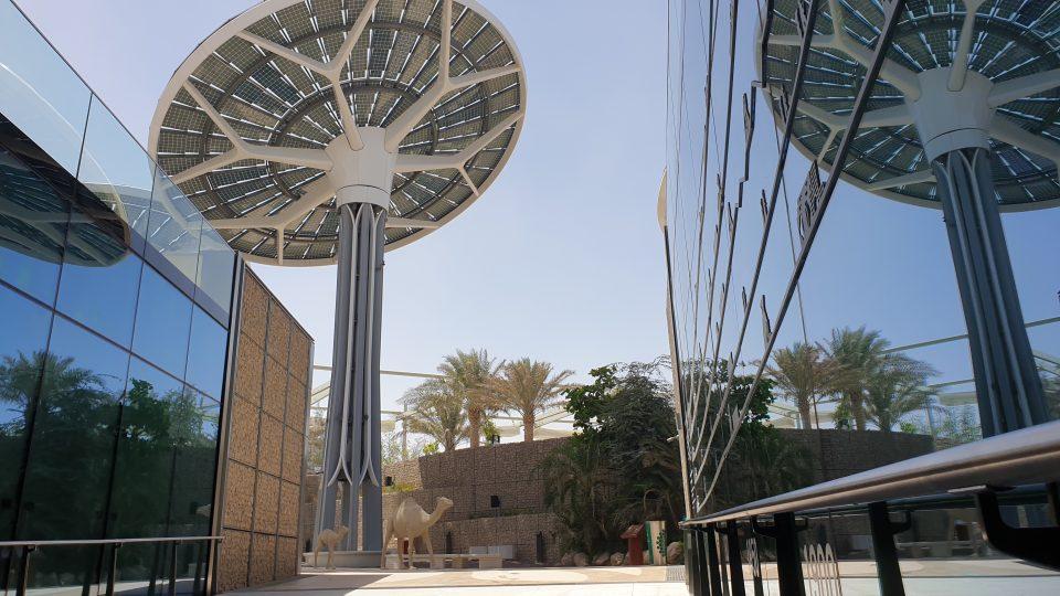 Obrovské energetické disky připomínají slunečnice, protože jejich hlavy se otáčejí během dne za sluncem, aby pochytaly co nejvíc energie
