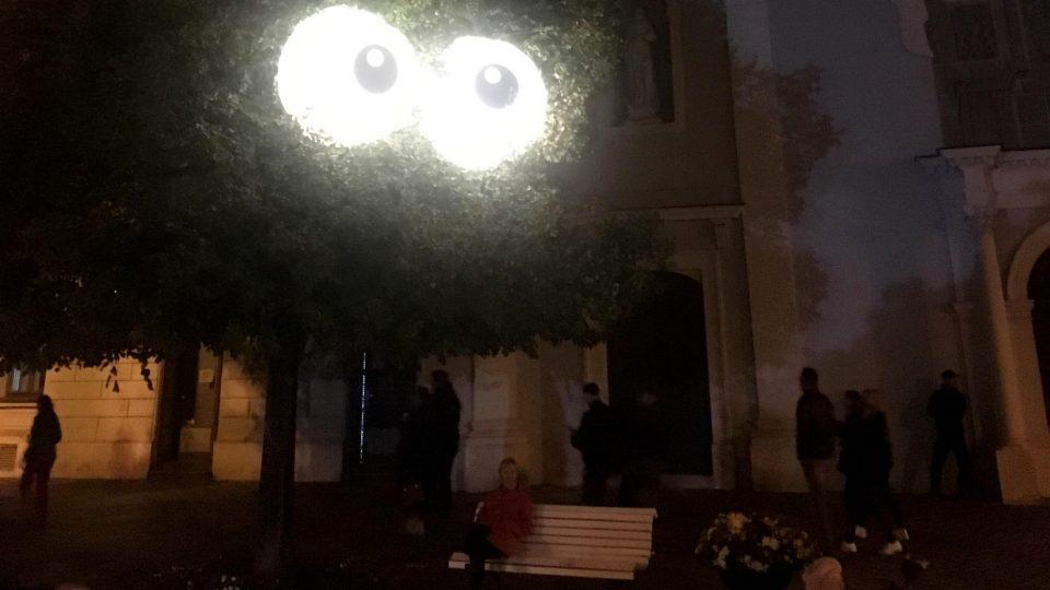 Z koruny stromu na návštěvníky zase zírají vyvalené oči