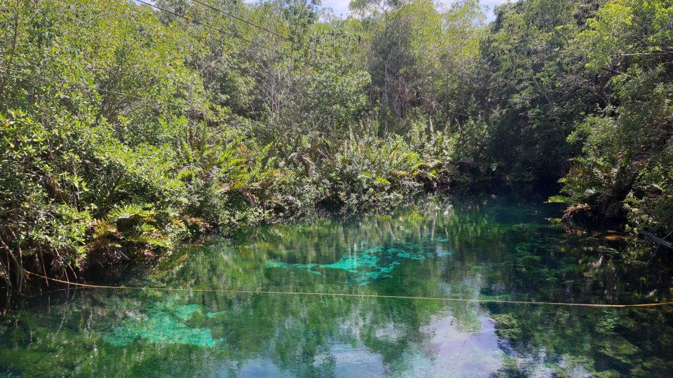 Cenote Xoonan-Ha na mexickém poloostrově Yucatán