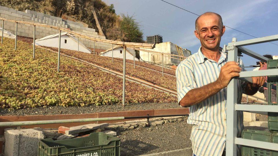 Vinař Paco Ríos pracuje na svých rozinkových políčkách celý život.