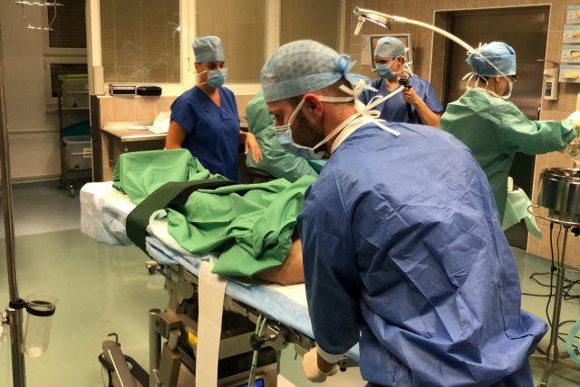 Příprava transplantace orgánů v pražském IKEMu