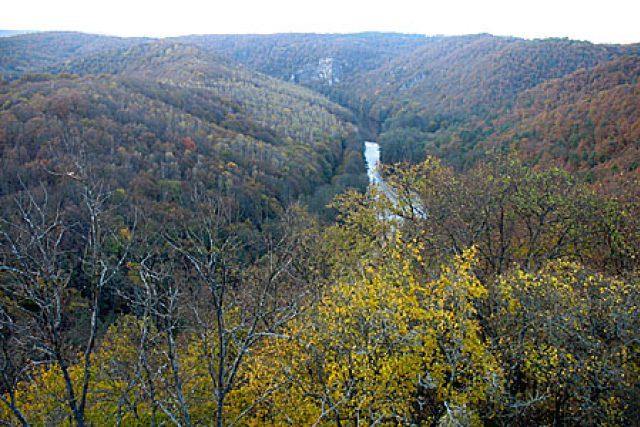 Meandry Dyje protékající Národním parkem Podyjí