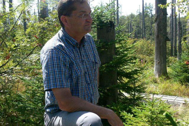 Les potřebuje čas, říká šéf bavorského národního parku Franz Leibl