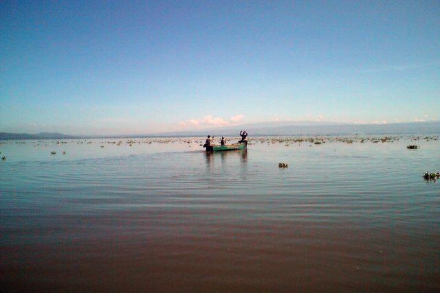 Keňské jezero Naivasha je ohroženo kvůli chemikáliím z květinových farem (ilustrační foto)