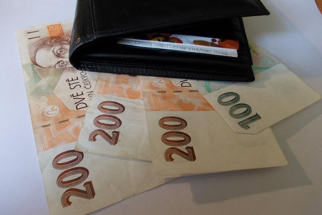 Peněženka + peníze