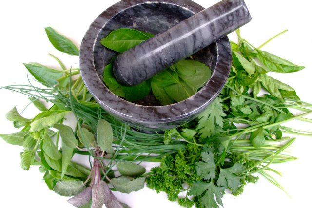 Bylinky jako přírodní léčivo
