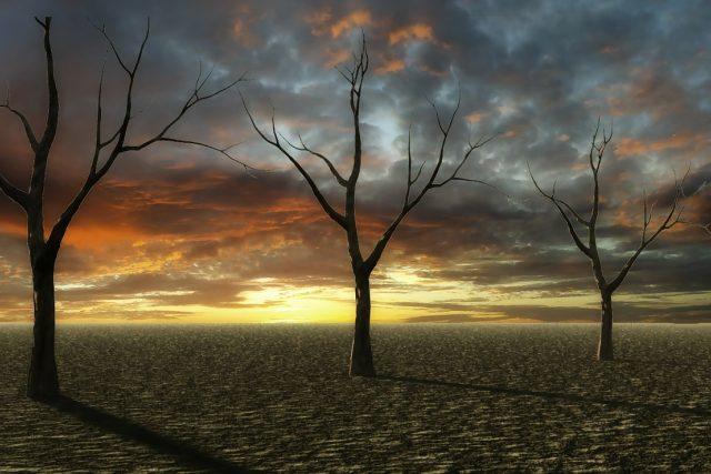 západ slunce na suchém poli