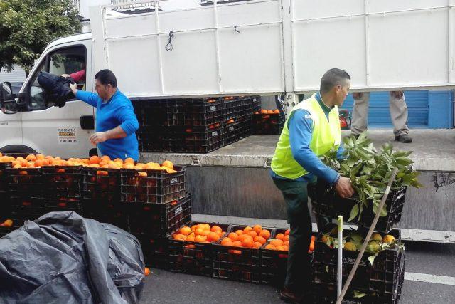 Muži skládají přepravky s pomeranči do dodávky. Denně si přijdou na 40 až 45 eur