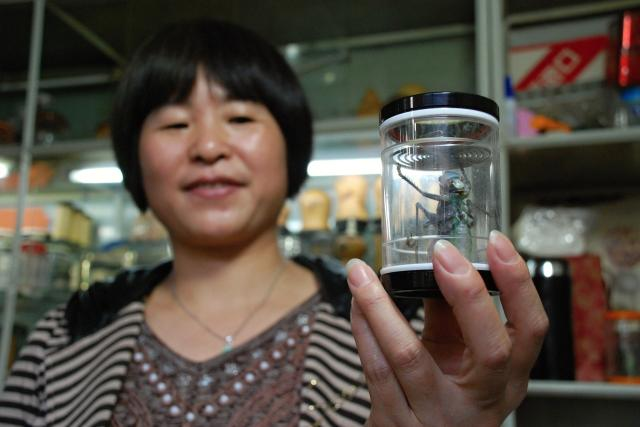 Paní Čju Čju  Šin má obchod s cvrčky už dvacet let