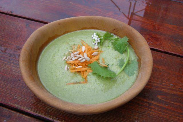 Polévka z bršlice a česnáčku s avokádem