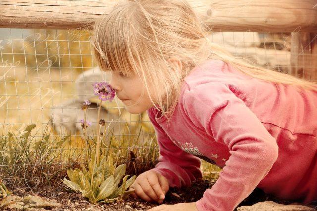 Dívka vonící ke květině
