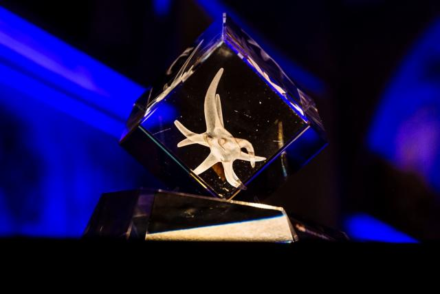 Detail ceny Nadačního fondu Neuron | foto: Lukáš Bíba