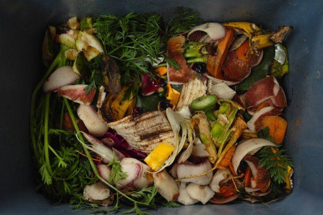 Plýtvání jídlem - plýtvání potravinami - jídlo - potraviny - odpadly - popelnice