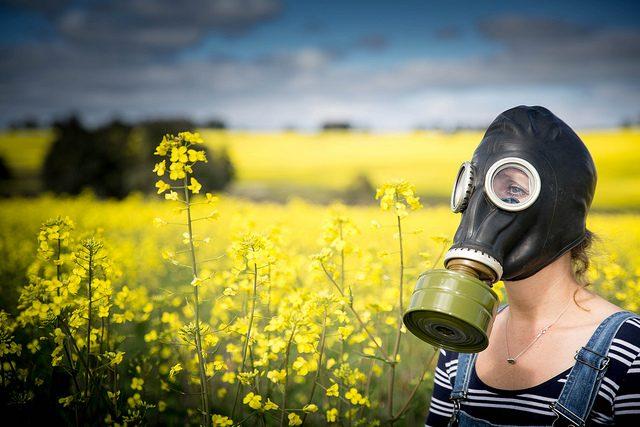 Znáte účinky geneticky modifikovaných potravin? | foto: flickr.com Liam Wilde