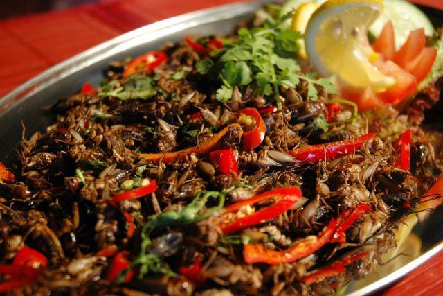 Hmyzí hody a pražení cvrčci jsou jednou ze specialit Klubu cestovatelů