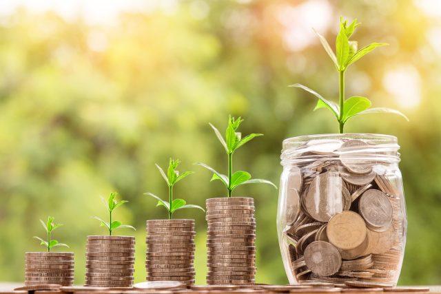 Při dobré investici vaše úspory porostou