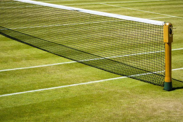 Poslechněte si celý Speciál Radiožurnálu Sport o právě začínajícím Wimbledonu | foto: Shutterstock