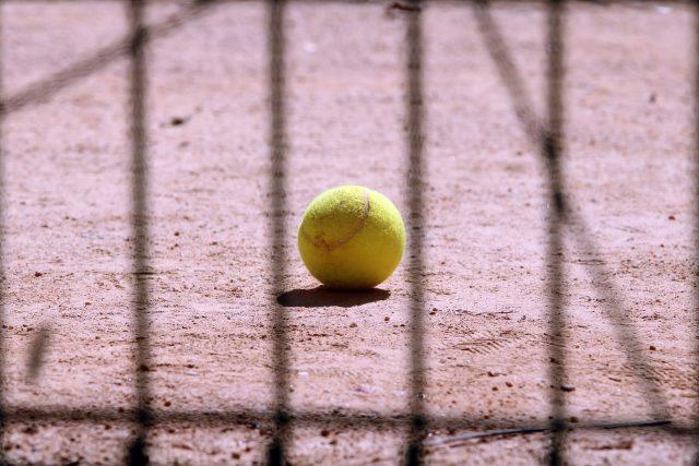Poslechněte si celý rozhovor s bývalou 16. hráčkou žebříčku WTA Danielou Bedáňovou   foto: Fotobanka Pixabay