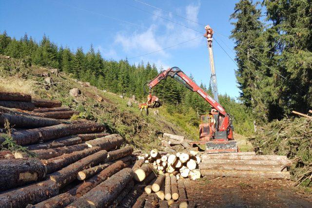 Lesníci v Rakousku využívají nejmodernější technologické postupy