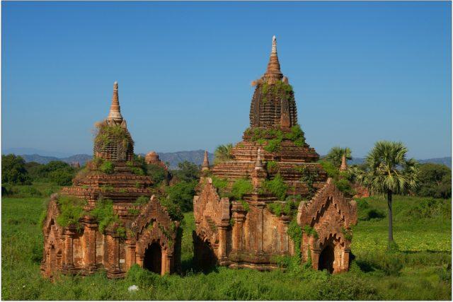 Spojení chrámů s přírodou je pro Barmu klasické