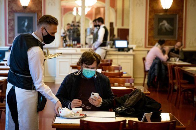 restaurace za covidu (pražské Café Louvre)