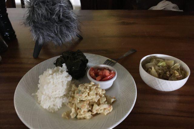 Od každého trochu: laulau, trhané vepřové maso se zelím, rýže a smetanový těstovinový salát