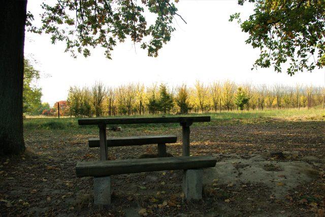 Odpočinkové místo mezi lesem a sady nad Ostroměří