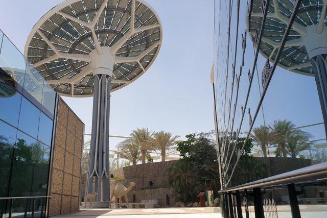 Obrovské energetické disky připomínají slunečnice,  protože jejich hlavy se otáčejí během dne za sluncem,  aby pochytaly co nejvíc energie | foto: Štěpán Macháček,  Český rozhlas,  Český rozhlas