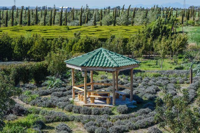 Botanická zahrada Cyherbia na Kypru