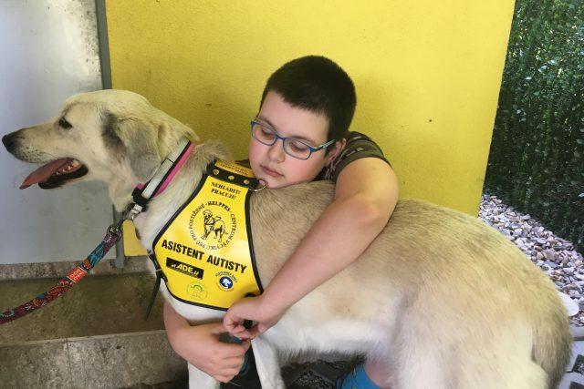 Fenka Azra pomáhá Vojtovi, který má autismus. Díky ní lépe usíná a nebojí se chodit ven
