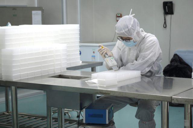 Technik testuje vzorky na koronavirus