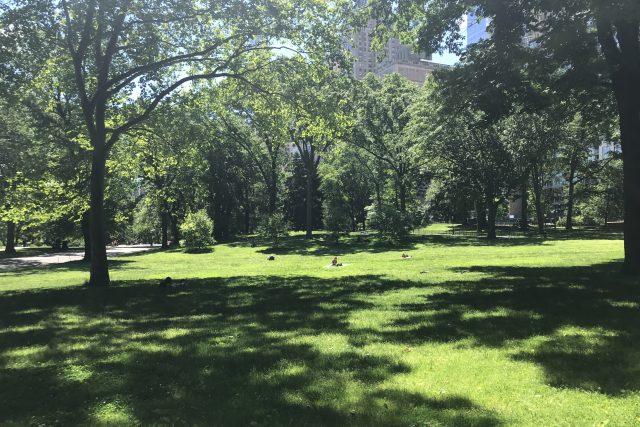 Central Park v New Yorku obklopují mrakodrapy