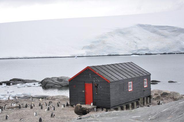 Na pobřeží Antarktidy.